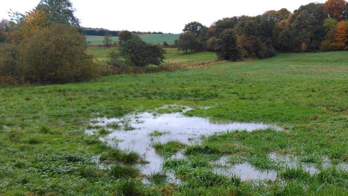Vandlidende arealer