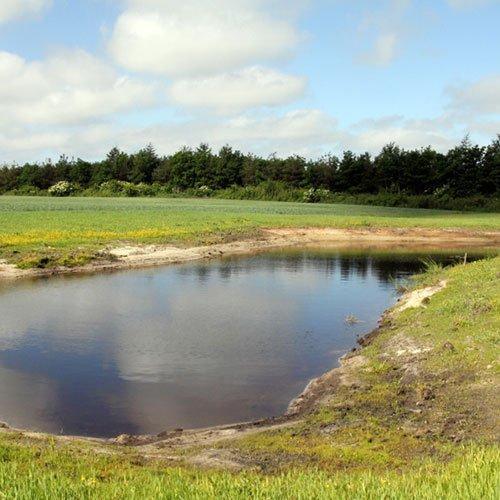 Gravning af sø