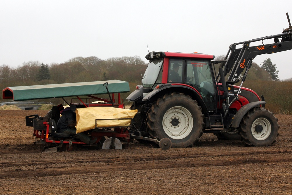 Plantefolk igang med plantning på to-rækket plantemaskine monteret på en Valtra traktor.